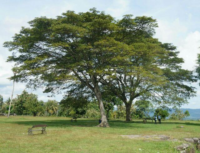 Kraton Ratu Boko, Sleman